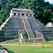 The Mayan Ruins in Copan, Honduras