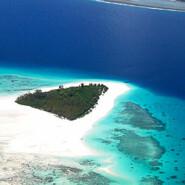 More on Zanzibar